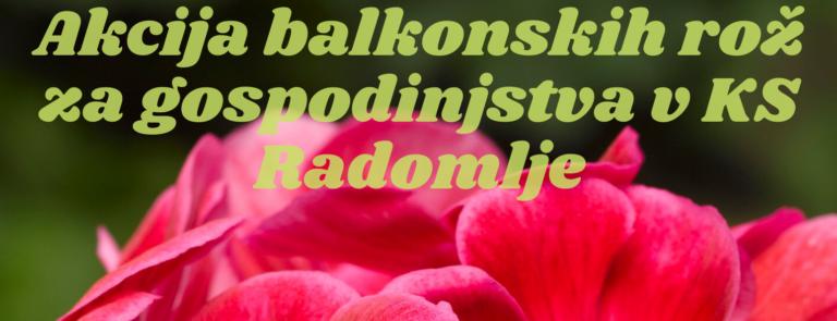 Akcija balkonskih rož za gospodinjstva v KS Radomlje